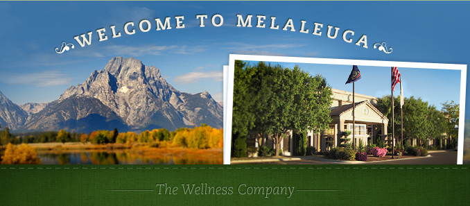 what is the melaleuca