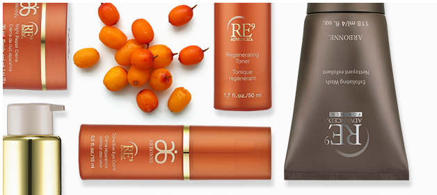 what is the arbonne international