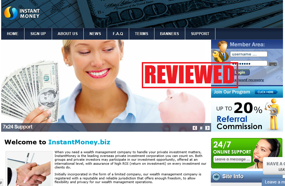What is the Instant Money Biz