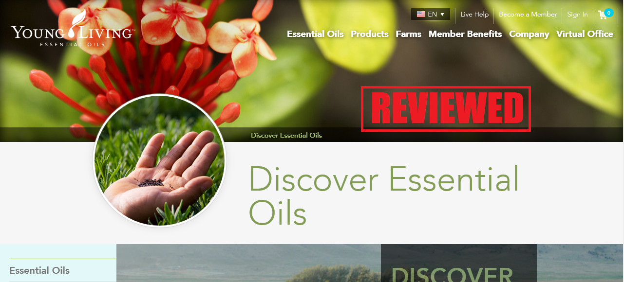 What is the Young Living Essential Oils