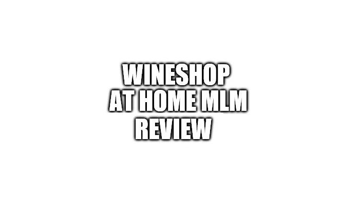 WineShop At Home Review