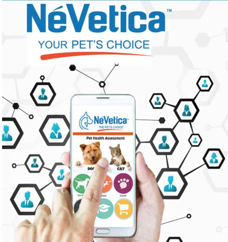 What is NeVetica